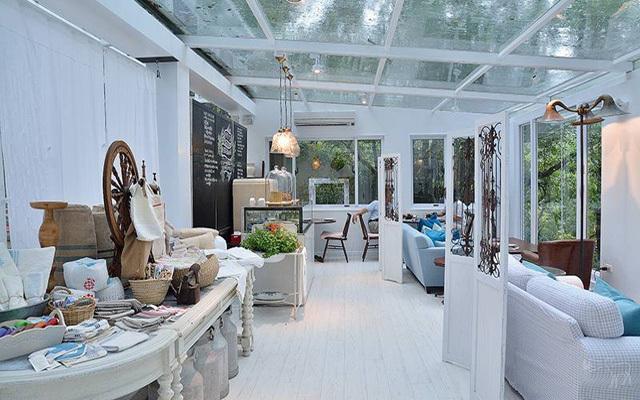 走进秘境里的白色透明屋子