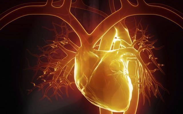 第九届北京五洲心血管病研讨会