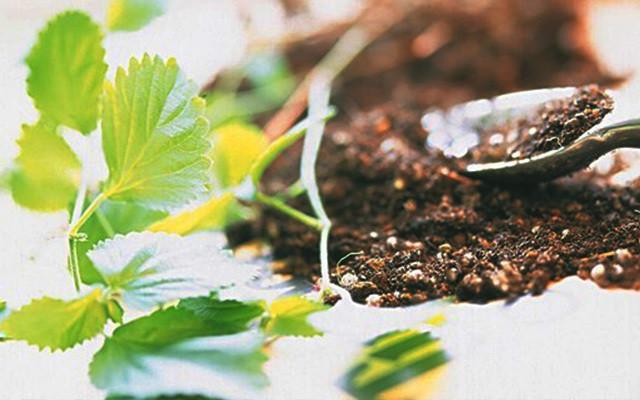 第二届新型肥料研究开发与新产品、新工艺、 新设备研讨会
