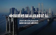 中国柔性显示高峰论坛