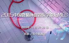 2015中国微循环血管医学论坛MEC