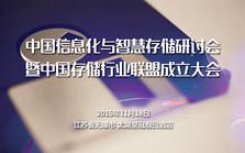 中国信息化与智慧存储研讨会