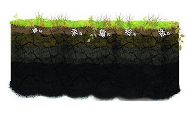 农产品重金属污染治理国际研讨会