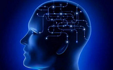 事件相关光学脑成像技术研讨会