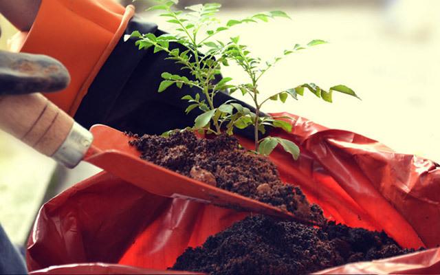 中国水土保持学会工程绿化专业委员会2015年年会