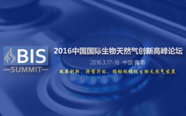 2016中国国际生物天然气创新高峰论坛