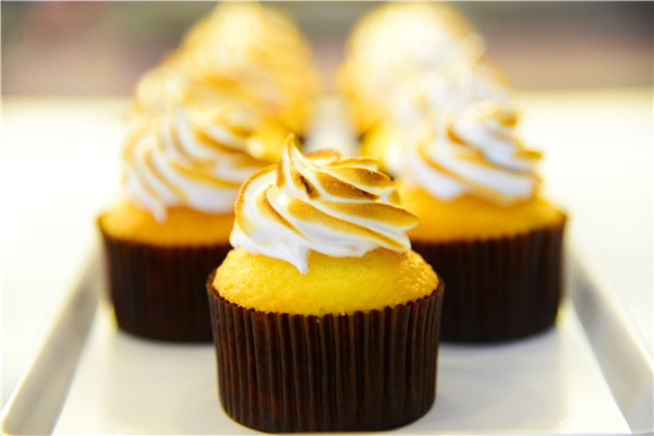 cupcake的专属领域