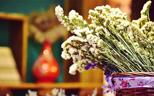 住进民国的花与梦之中