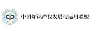 中国知识产权发展与运用联盟