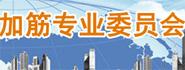 中国土工合成材料工程协会加筋专业委员会