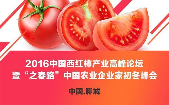 """2016中国西红柿产业高峰论坛暨""""之春路""""中国农业企业家初冬峰会"""