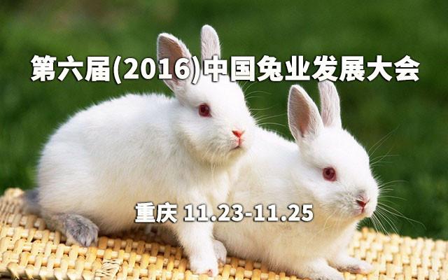 第六届(2016)中国兔业发展大会