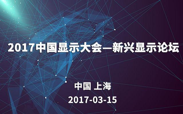 2017中国显示大会—新兴显示论坛