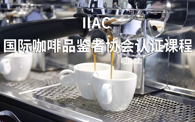 2019 IIAC 国际咖啡品鉴者协会认证课程