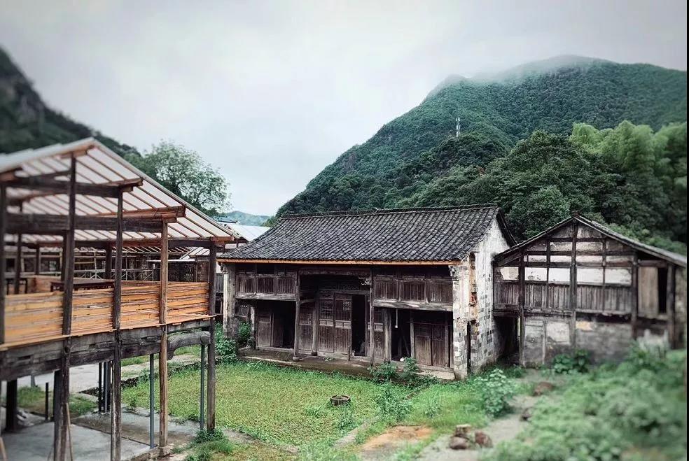 Grape studio[那些花事」花艺游学:金华古村落