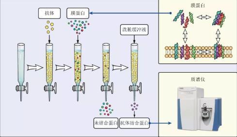 2019SCI論文插圖培訓班(10月廣州)