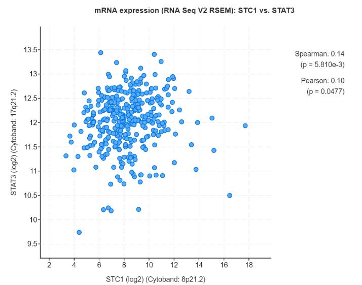 2019非编码RNA数据分析及研究思路研讨会(11月上海班)