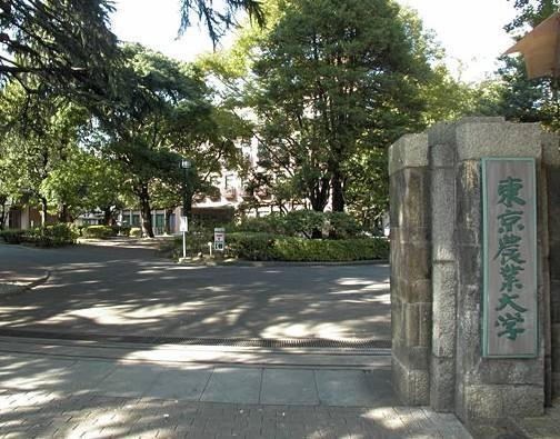 日本东京农业大学