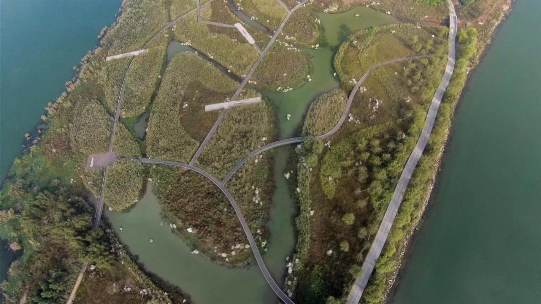 中国滨水岸线生态修复与景观环境再生国际论坛