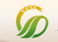 中国国外农业经济研究会