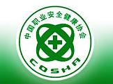 中国职业安全健康协会行为安全专业委员会
