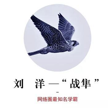 刘洋(战隼warfalcon)照片