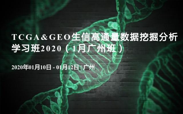 TCGA&GEO生信高通量数据挖掘分析学习班2020(1月广州班)