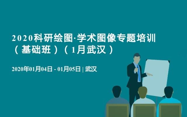 2020科研绘图·学术图像专题培训 (基础班)(1月武汉)