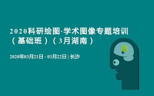 2020科研绘图·学术图像专题培训 (基础班)(3月湖南)