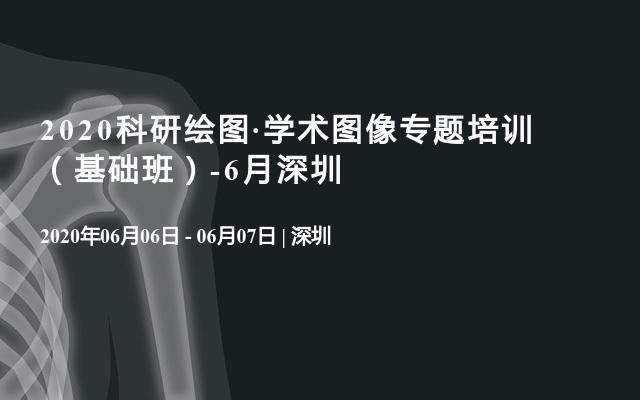 2020科研绘图·学术图像专题培训  (基础班)-6月深圳