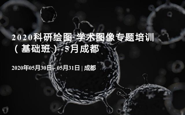 2020科研绘图·学术图像专题培训  (基础班)-5月成都