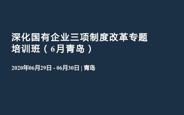 深化国有企业三项制度改革专题培训班(6月青岛)