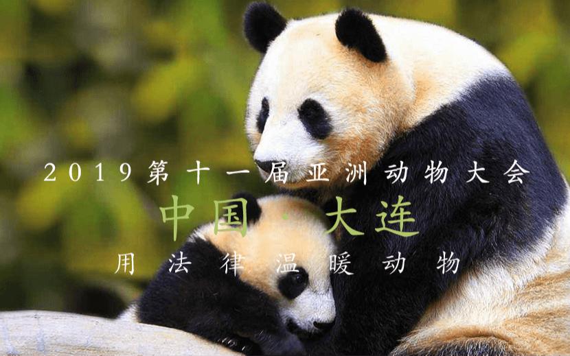 2019第十一届亚洲动物大会(Asia for Animals)| 大连