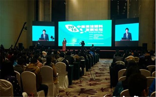 2015中国清洁燃料发展论坛现场图片