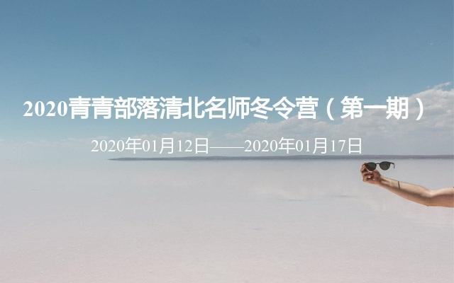 2020青青部落清北名师冬令营(第一期)