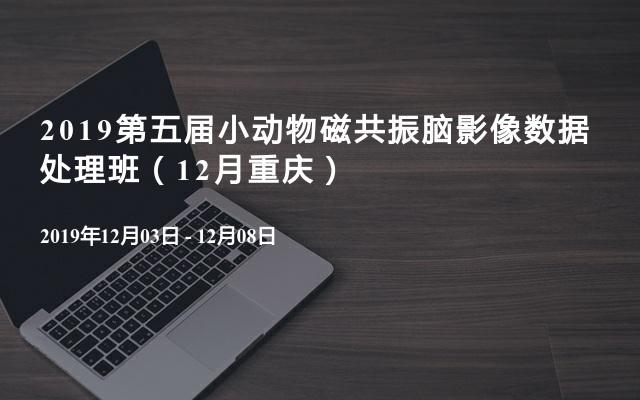 2019第五届小动物磁共振脑影像数据处理班(12月重庆)
