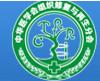 中华医学会组织修复与再生分会