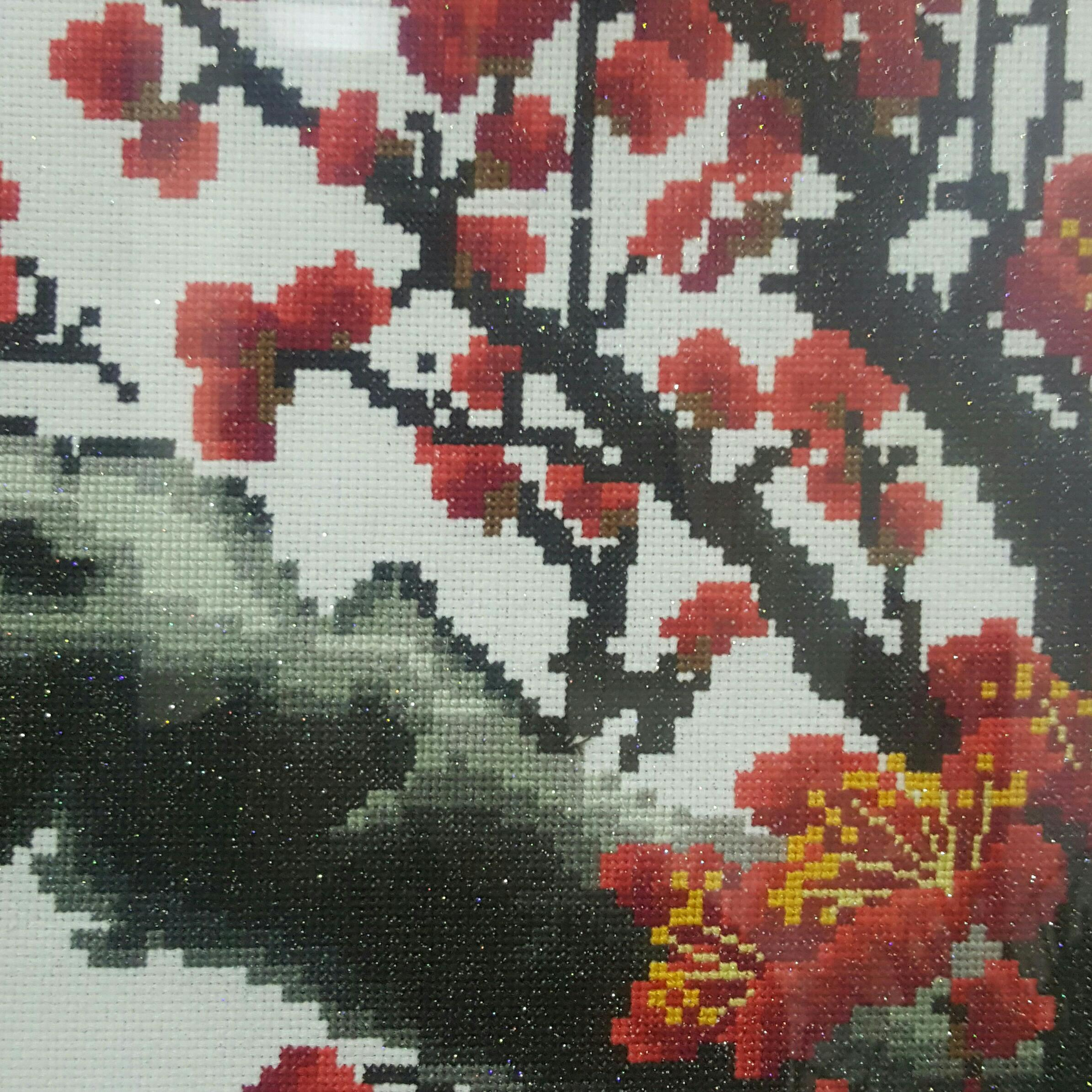 汾西县山水源生态农牧有限公司董事长闫明庆照片