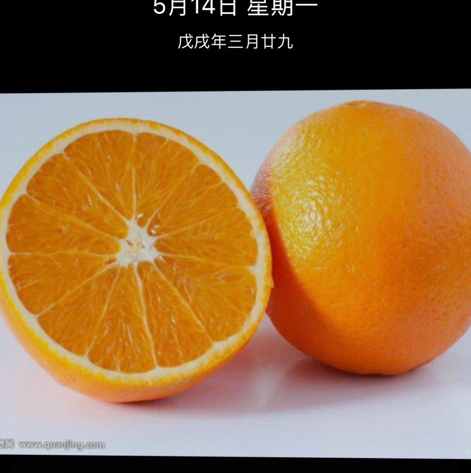 广东晶科电子股份有限公司总监杨儒铭照片