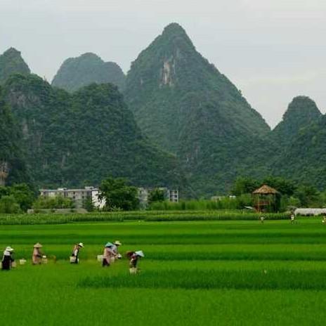 绿之源生态农场法人韦仁仕照片