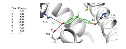 2018分子模拟与蛋白互作研习班