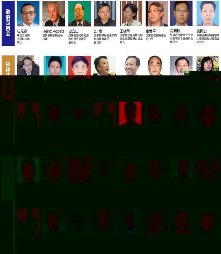2015中国国际生物质能源与生物质利用高峰论坛(BBS 2015)