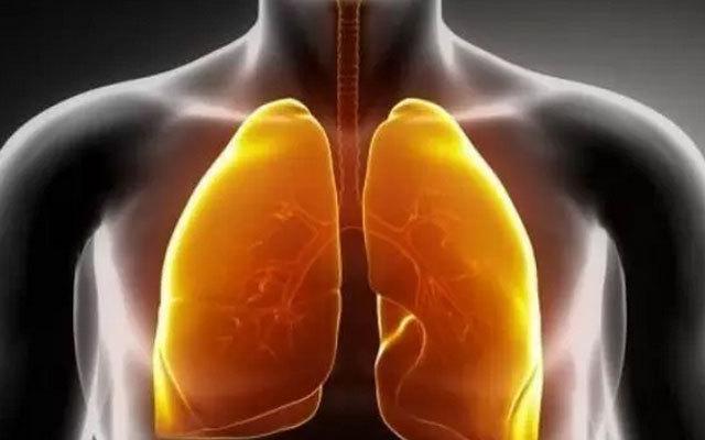 2015湖南省肺癌防治联盟/肺癌专业委员会学术年会