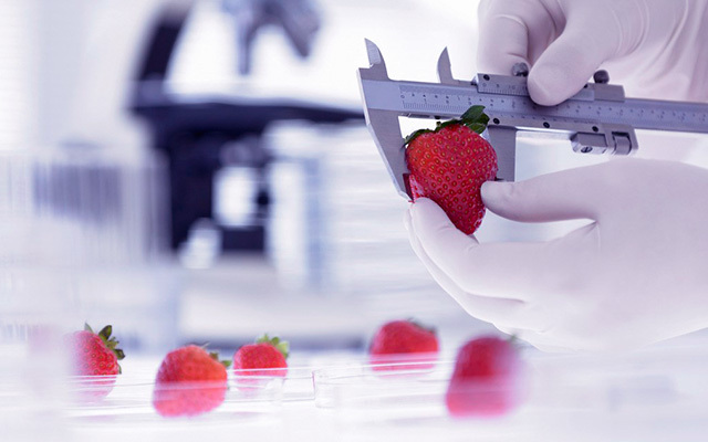 2015年广东省研究生学术论坛-食品科学与工程专业分论坛