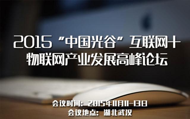 """2015""""中国光谷""""互联网+物联网产业发展高峰论坛"""