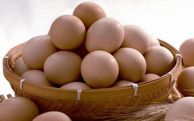 蛋品加工销售行业协会2015年年会
