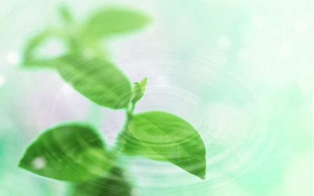 2015年新风净化产品全国统检总结会
