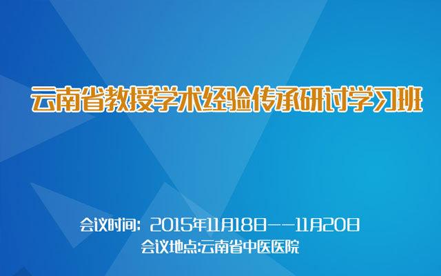 云南省教授学术经验传承研讨学习班