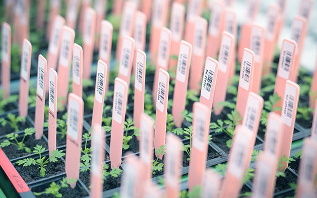 中国现代农业创新发展高层峰会
