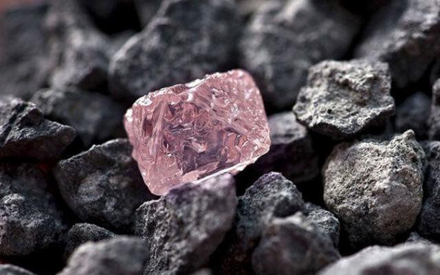 2015(第四届)铁矿石发展高端论坛